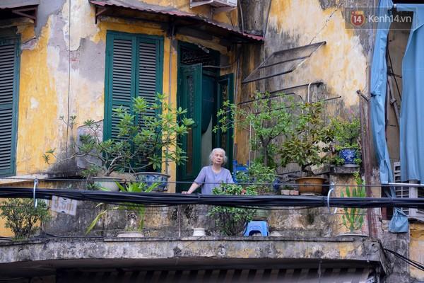 Cụ già vào buổi sáng sớm Hà Nội ngày trở gió