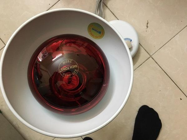 denhongngoaidlamp250w (5)