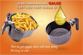 noi chien khong dau galuz 301-1