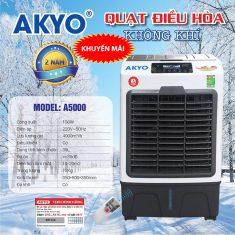 akyoa50001 copy